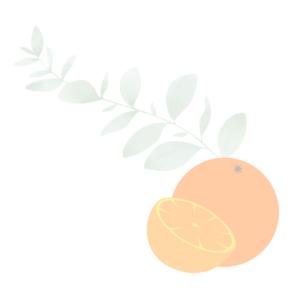Taller de tartas caseras y dulces por encargo. Mamá Naranja